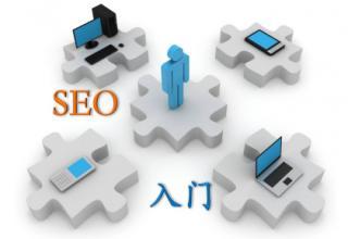 SEO架构优化系统选择